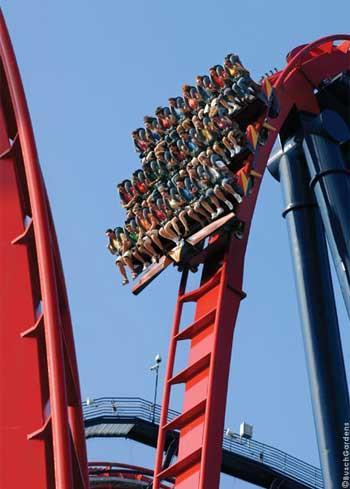 Sheikra Review Coaster101
