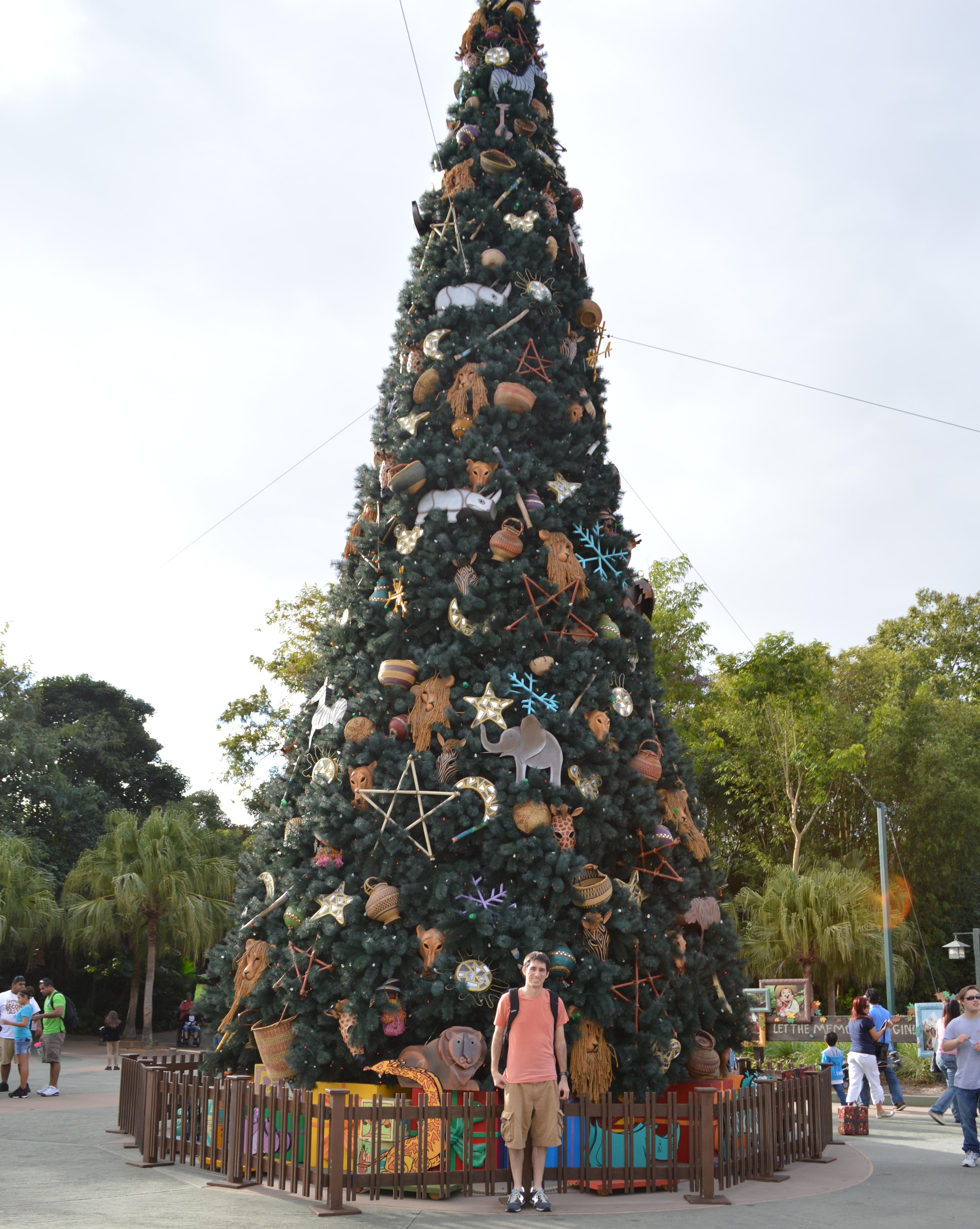 Magic Kingdom Christmas Lights