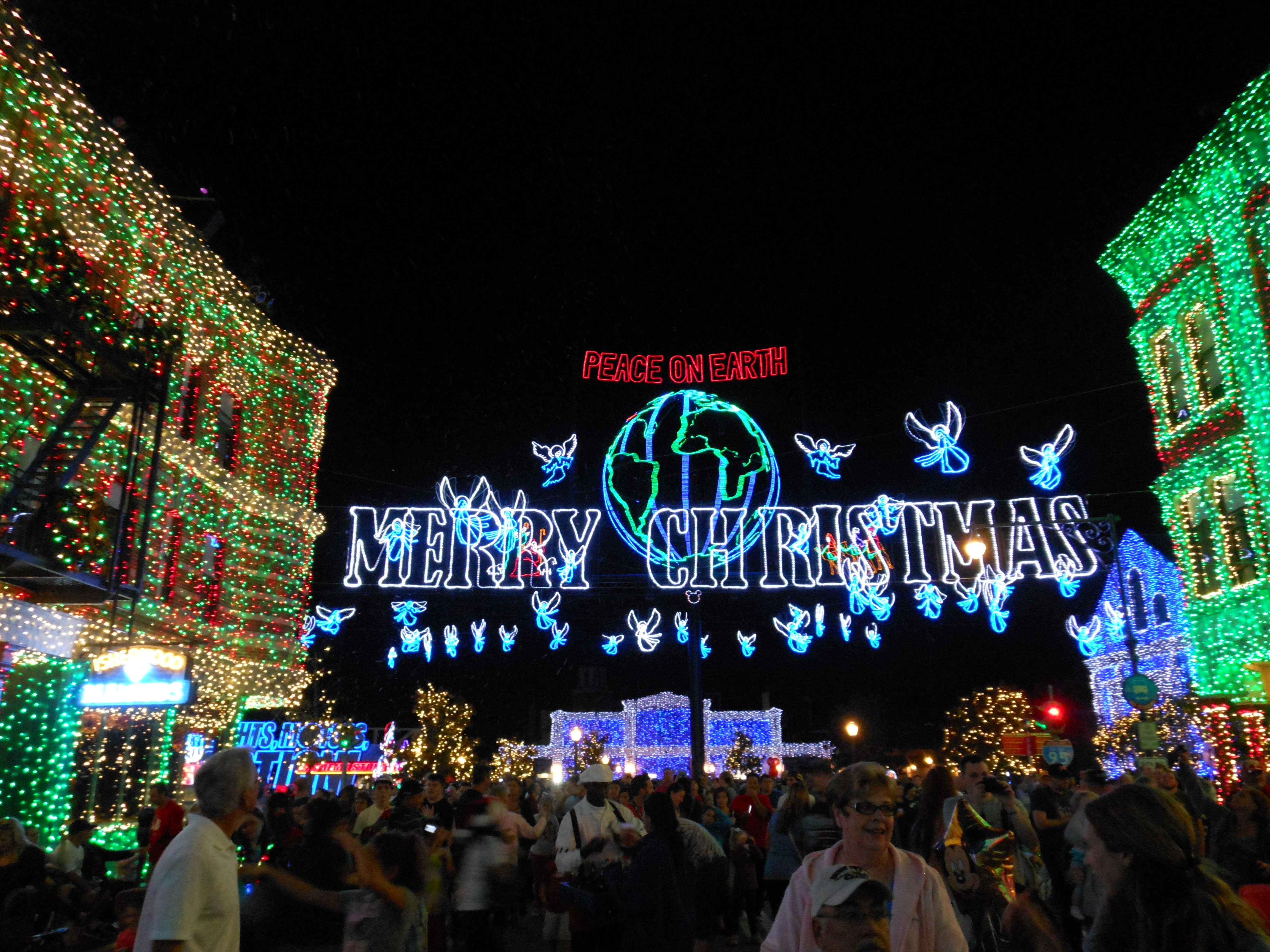 i always thought the columbus zoos dancing light show was awesome but i was blown away by the sheer density of disneys christmas lights - Disney World Christmas Lights