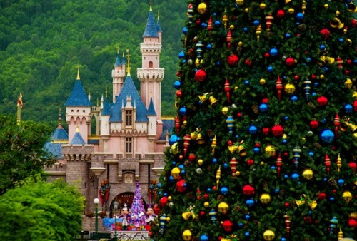 treehkd 500x338 Disney Parks Many Christmas Trees
