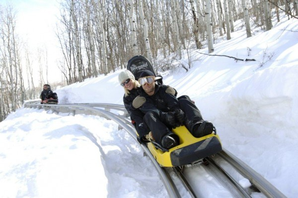 alpine coaster in the snow