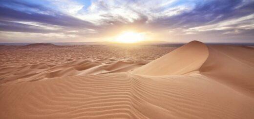 coaster-desert-2