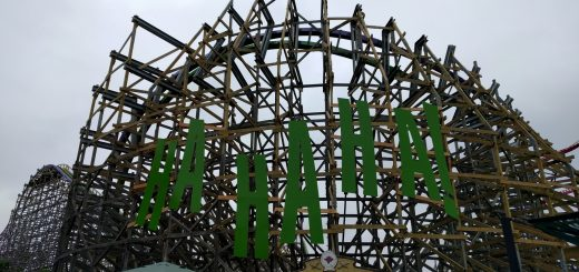 The decoration on the side of the breaking wave turn of The Joker.
