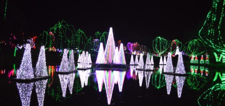 columbus zoo wildlights 2016