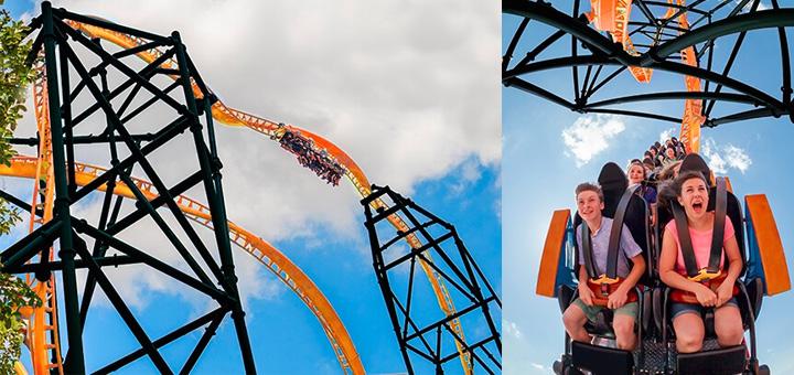 Busch Gardens Tampa Announces Triple-Launch Tigris Coaster for 2019